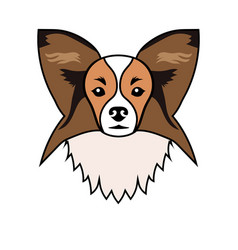 portrait of a dog breed papillon vector image