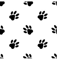 seamless pattern cats feet on white background vector image