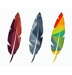 Set of colored feathers Abstract polygonal element vector image