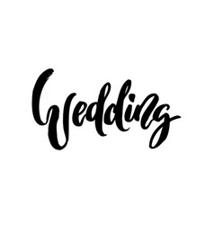 wedding calligraphy lettering on white isolated vector image