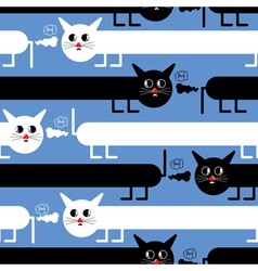 crazy cats vector image