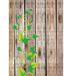 wood background with leaf vector image