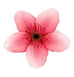 A pink five-petal flower vector