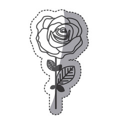 Silhouette rose with oval petals and leaves icon vector