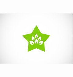 star organic green leaf logo vector image