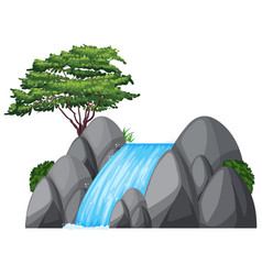 waterfall and green tree on the rock vector image
