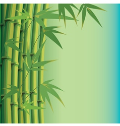 Background with bamboo leaves and stems vector