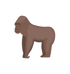 gorilla african animal vector image