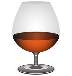 brandy glass vector image vector image