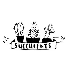 set cactuses hand drawn vector image