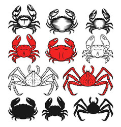 Set of the crabs icons on white background vector