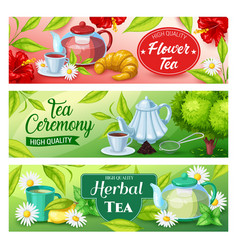 Tea beverage banners green herbal black drink vector