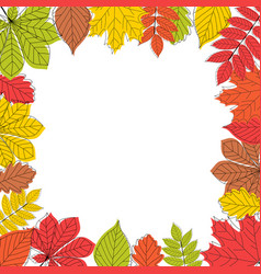 abstract autumn leaves background vector image