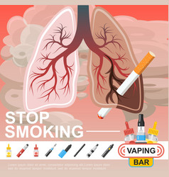 flat no smoking template vector image