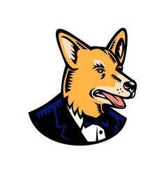 Pembroke welsh corgi wearing tuxedo woodcut color vector