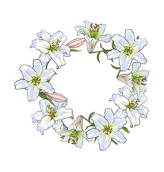 round frame of white lily flowers decoration vector image