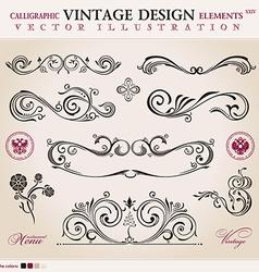 set classic Calligraphic design elements ornament vector image