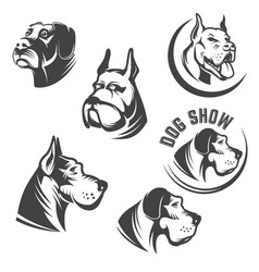 set dog heads icons isolated on white vector image