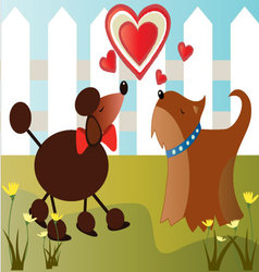 Dogs-in-love vector image