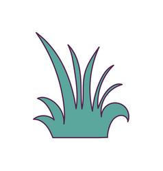 Isolated nature shrub design vector