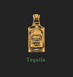 tequila bottle hand drawn vector image