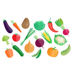 vegetables big set healthy vegetarian food vector image vector image