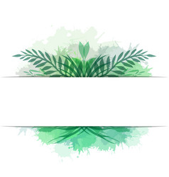 cover with leaves plants and herbs with vector image