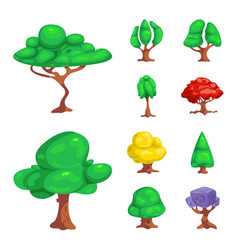 isolated object of tree and nature icon set of vector image