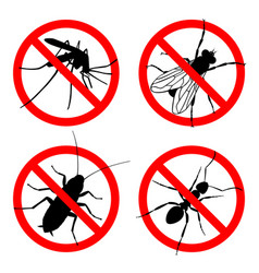 pests vector image