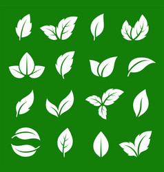 set of abstract natural green leaf icons vector image