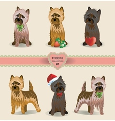 Terrier Collection vector image
