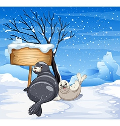 Two seals on snowy day vector