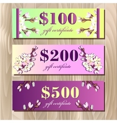Voucher Gift certificate Coupon template Spring vector
