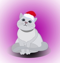Christmas cute cat vector image