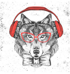 retro hipster animal wolf with headphones vector image
