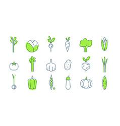 vegetable icons set healthy vegetarian food vector image vector image