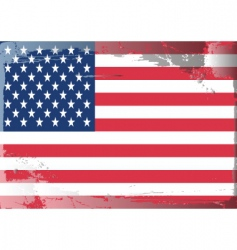 america national flag vector image