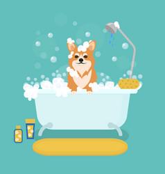 cartoon dog in bath grooming services vector image