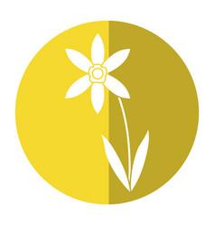 lily petal natural style shadow vector image