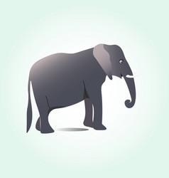 elephant vector image