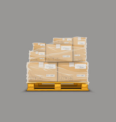 Boxes stretch fim on pallet vector