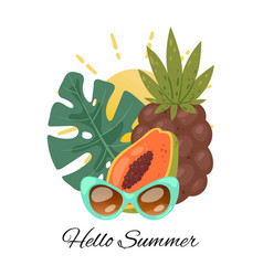 hello summer tropical summertime vector image