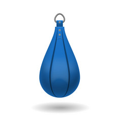 Punching bag for training impact velocity vector