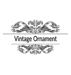 Vintage Abstract Calligraphic Ornament vector image