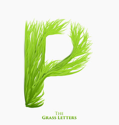 letter p of juicy grass alphabet green p vector image