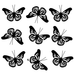 pattern with big black butterflies vector image vector image