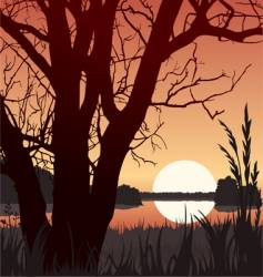 Sunset and tree vector