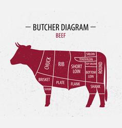 cut of beef poster butcher diagram vector image