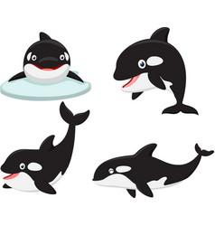 killer whale cartoon collection set vector image vector image