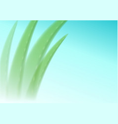 aloe vera blurred on a blue background editable vector image